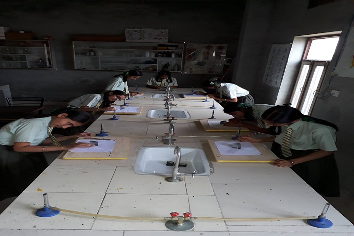 Punjab Convent School-Chemistry-Lab