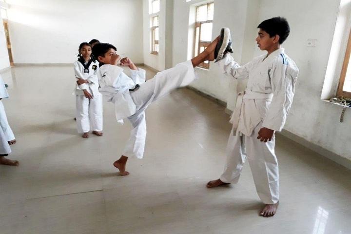 Punjab Convent School-Karate