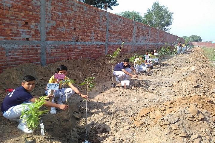 R K S Senior Secondary Public School-Plant A tree