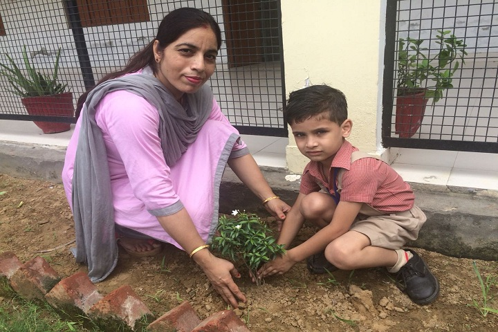 Roop Vatika-Plant A Tree Activity