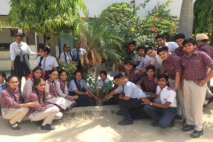 SDKL Dav Centenary Public School-Activity