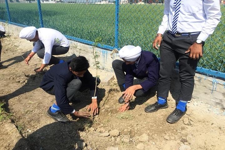 S K Public Senior Secondary School-Plant a Tree Program