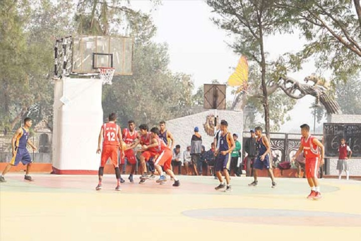 Sacred Heart Convent Senior Secondary School-Sports