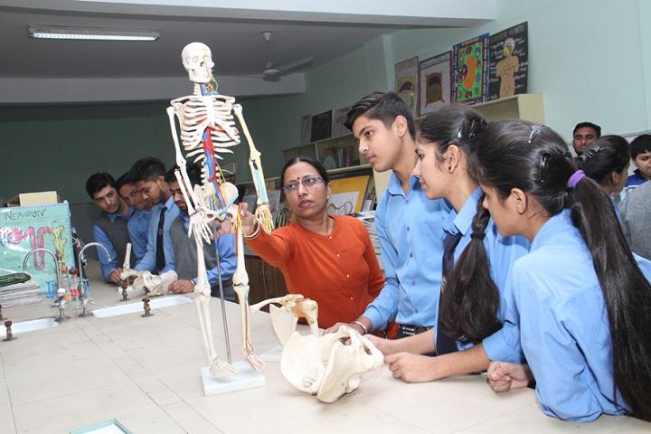 Sanskiriti Kmv School-Biology Lab