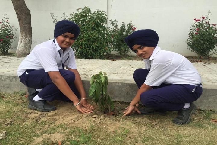 Sant Baba Bhag Singh International School-Planting