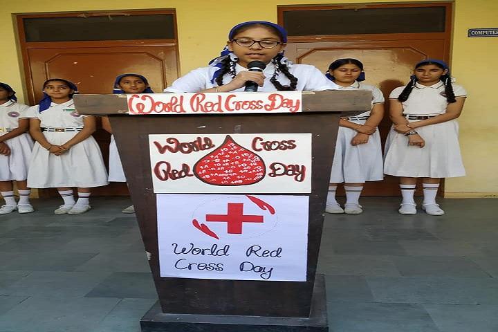 Sant Baba Nidhan Singh Ji Public School-World Red Cross Day