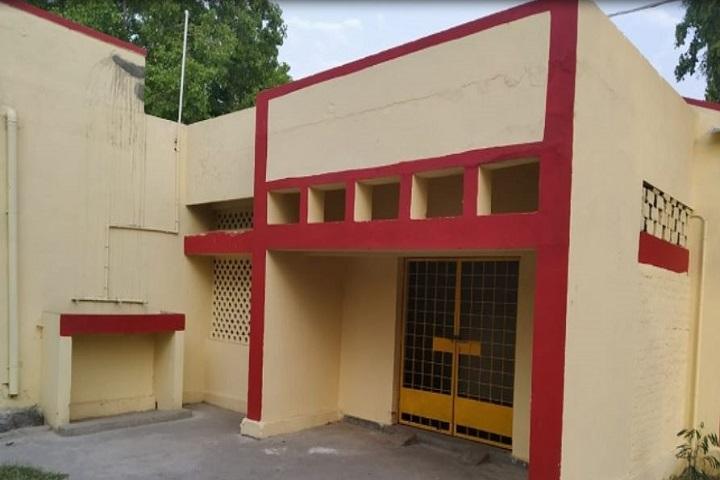 Jawahar Navodaya Vidyalaya-Gate