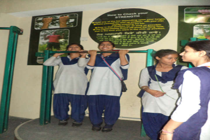 Shaheed Baba Deep Singh Public School-Gymnasium