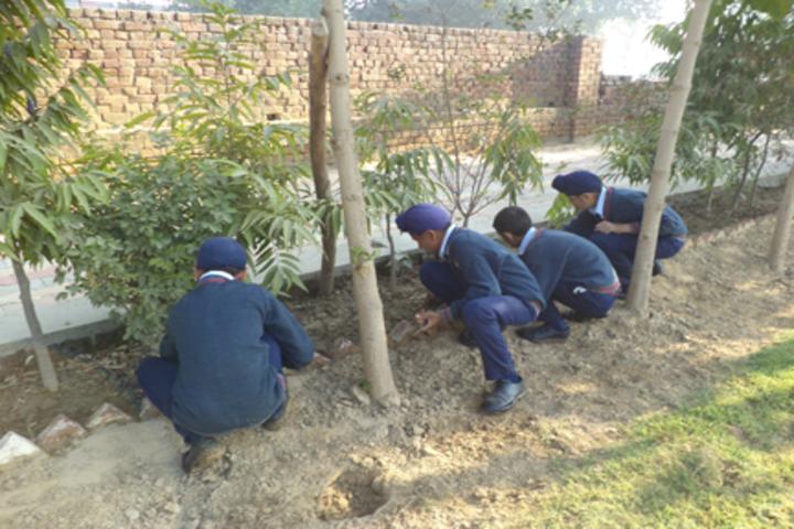 Shaheed Baba Deep Singh Public School-Tree Plantation