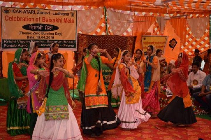 Sidhu Memorial Public School- event2