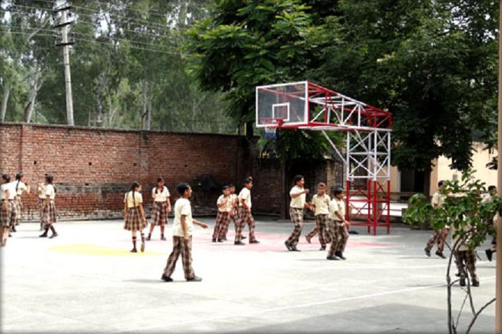 SMDRSD Collegiate Senior Secondary School-Play Ground