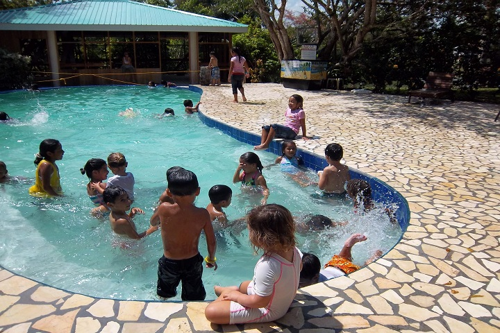 Spring Field Convent School-Swimming Pool