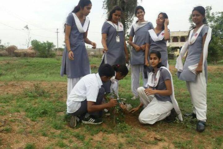 Army Public School-Planting