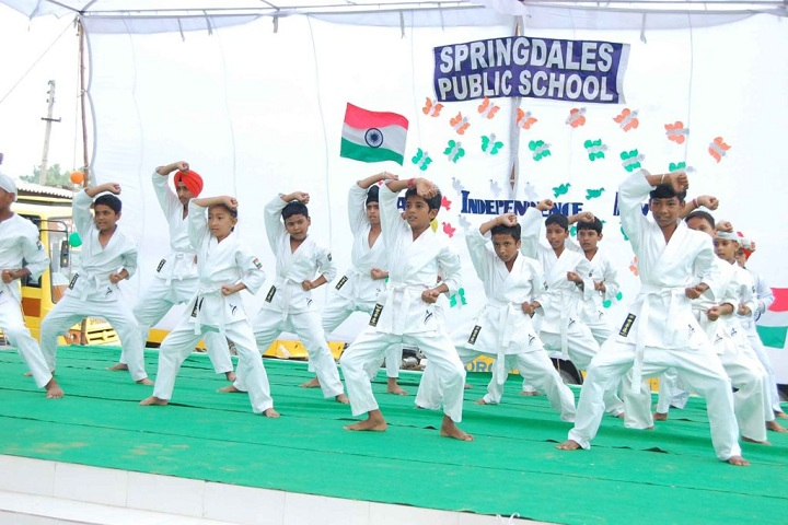 Springdales Public School-Independence Day