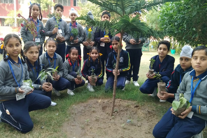 Sri Guru Harkrishan Public Senior Secondary School-Plantation