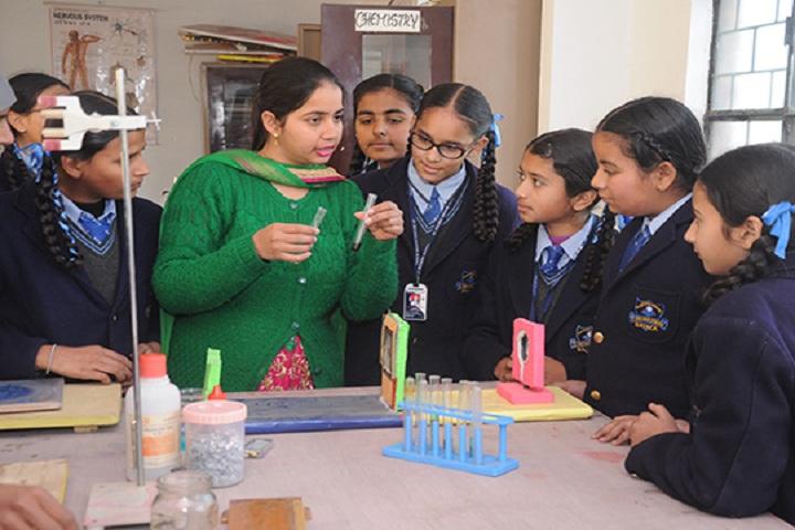 St Soldier Modern School-Science lab