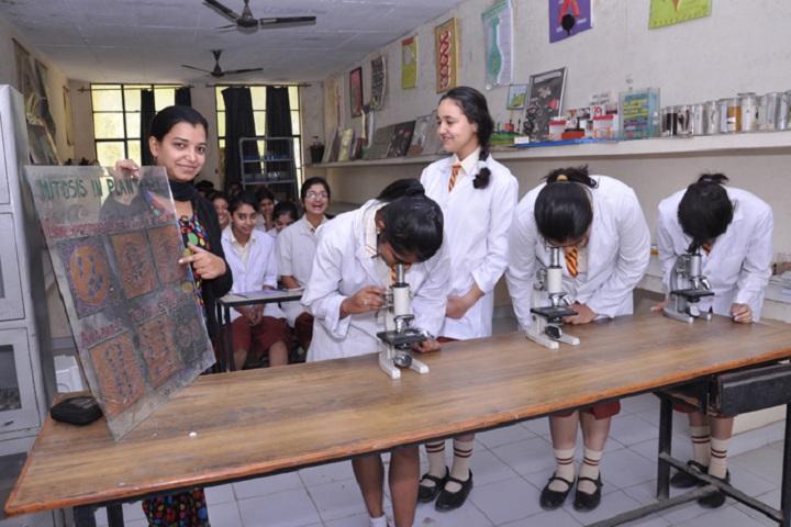 St Soldier Paradise Public School-Biology Lab