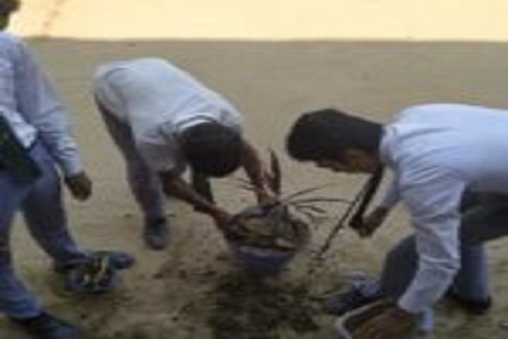 Kainat International School-Environmental Day