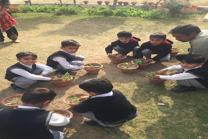 The Gladiolus School-Plant a Tree