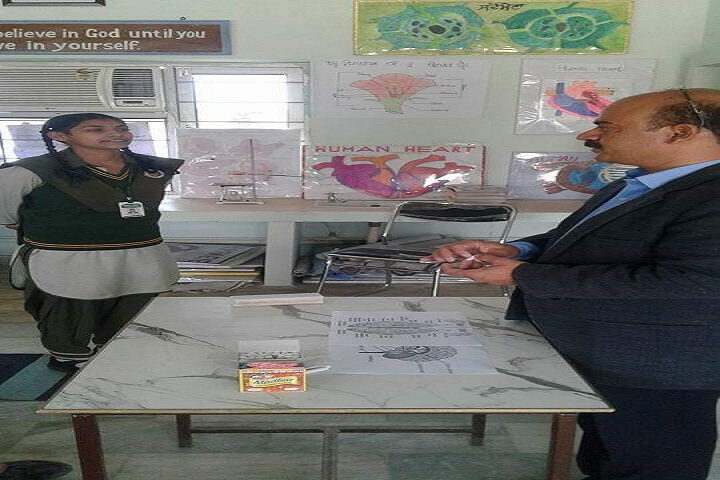 Vishal Public Senior Secondary School-Activity room
