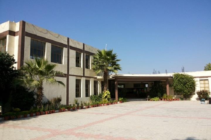 Vivek Public School-Campus View