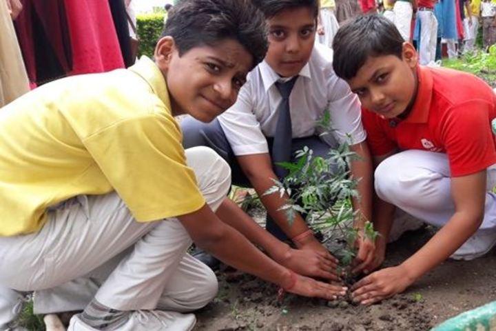Alank Day Boarding Cum Residential School- Tree Plantation