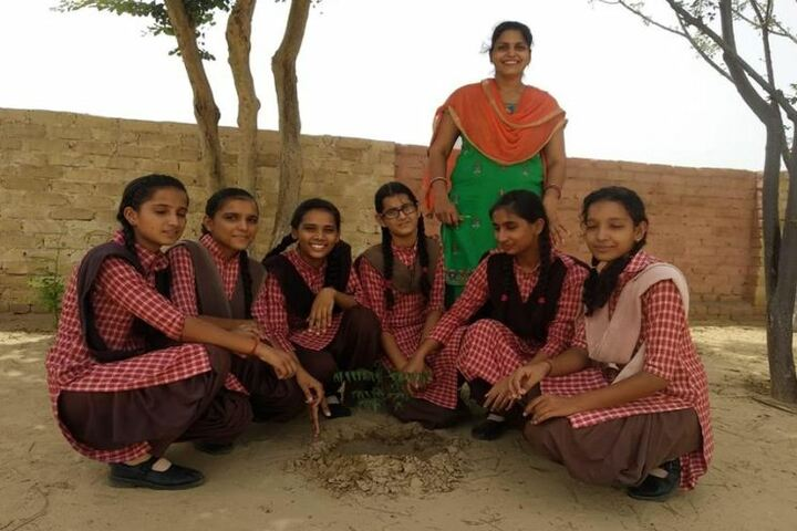 Ambition Public School-Tree Plantation