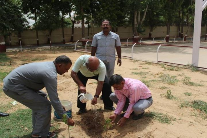 Birla School-Tree Plantataion