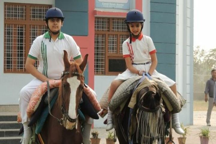 BSN Academy-Horse Riding