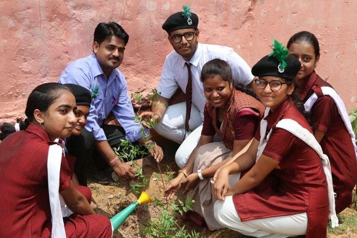 Central Academy-Tree Plantation