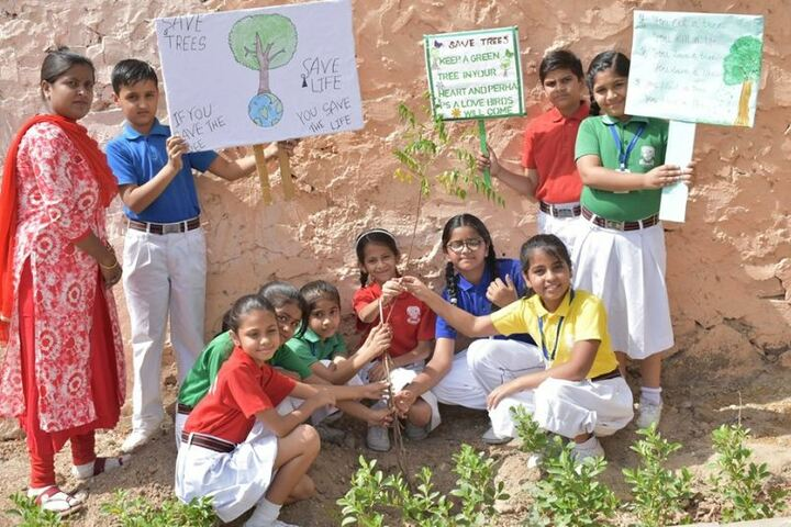 Central Academy School-Tree Plantation