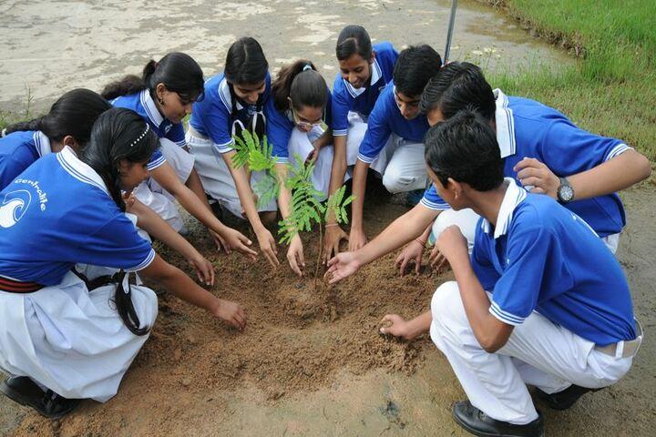 Central Academy Senior Secondary School-Tree Plantation