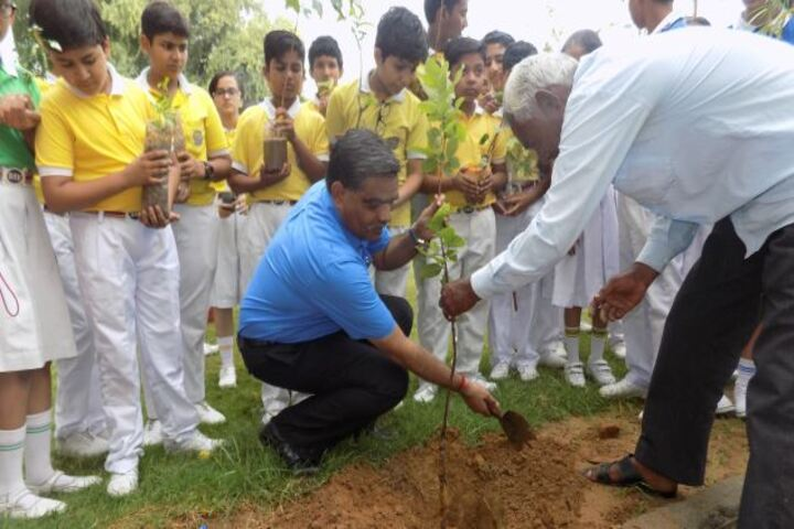 Dav Centenary Public School-Plantation