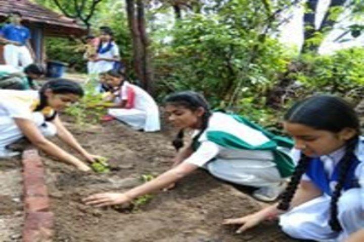 The Fabindia School-Tree Plantation