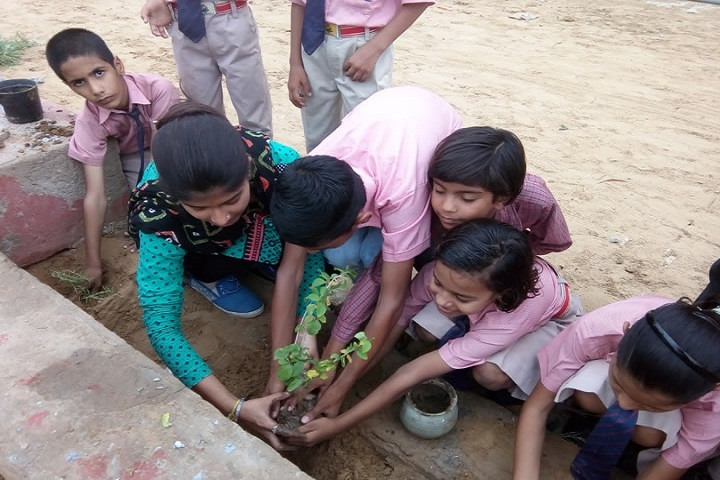 Global Indus Valley School-Planting