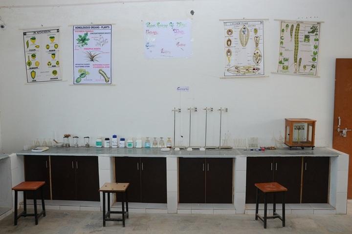 Global International Academy- Science lab