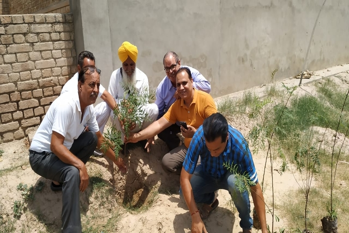 Guru Harkrishan Senior Secondary Public School-Tree plantation