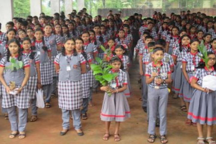 Kendriya Vidyalaya-Environmental Day