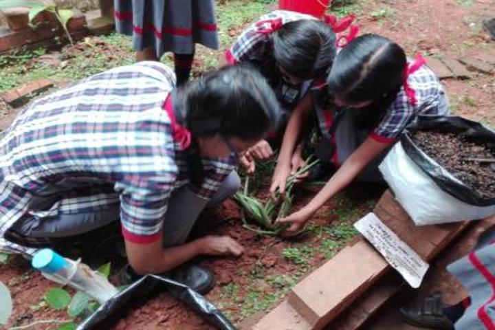 Kendriya Vidyalaya-Planting Tree