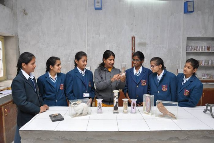 K D Jain Public School-Biology Lab