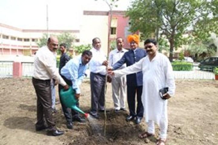 Kailash Vidya Vihar-Tree Plantation