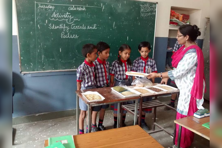 Conducting Various Activity for Students