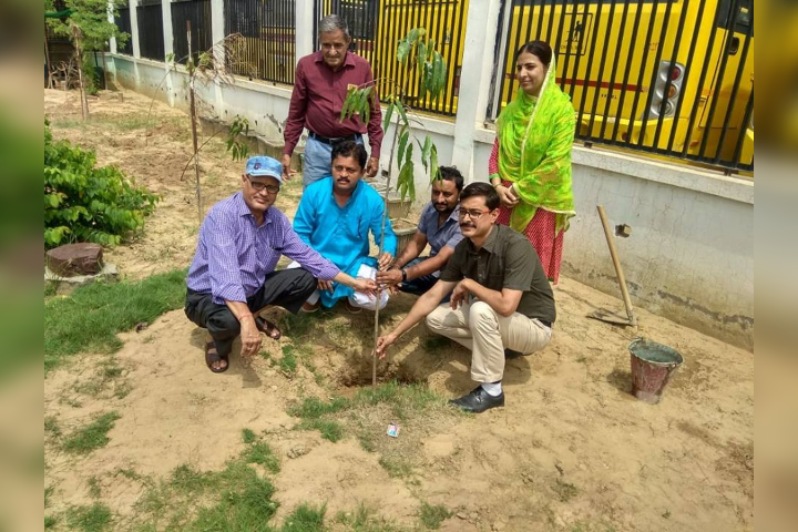 Krishna Public School-Tree Plantation Activity
