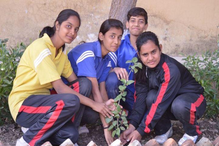 Lady Anusuya Singhania Educational Academy-Planting