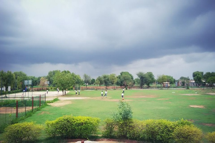 Mahrishi Dayanand Public School-Play Ground