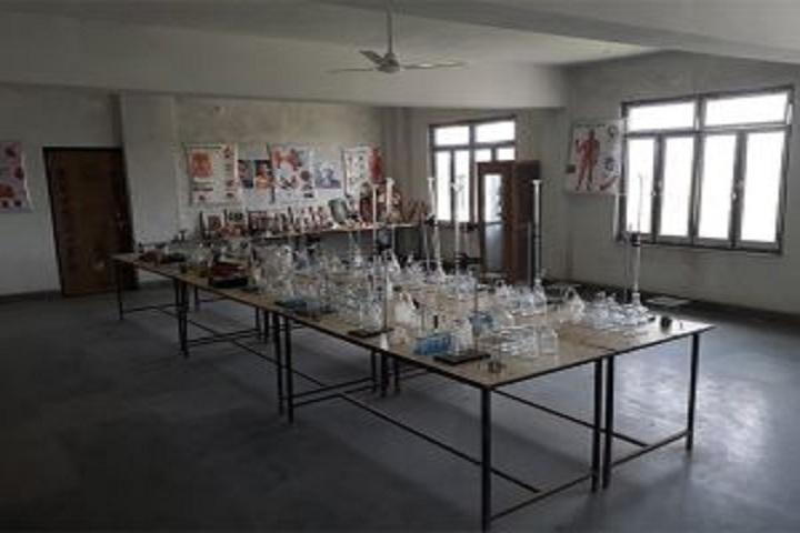 Manu Public School-Chemistry lab