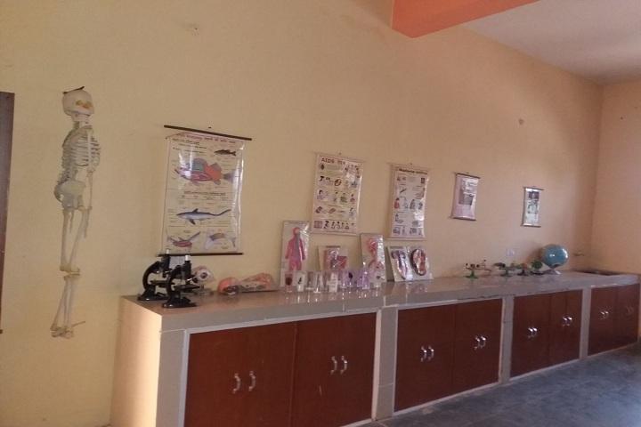 Master Meer Singh Memorial School-Chemsitry lab