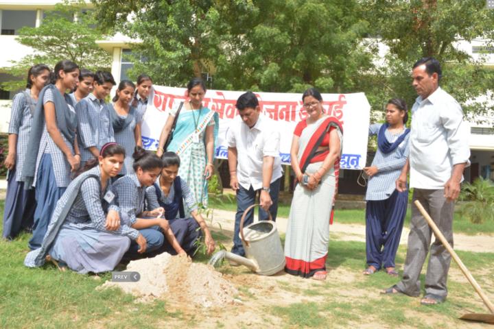 New Rajasthan Public School-Plantation