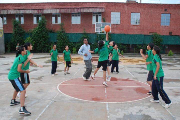 Nosegay Public School-Basket Ball court
