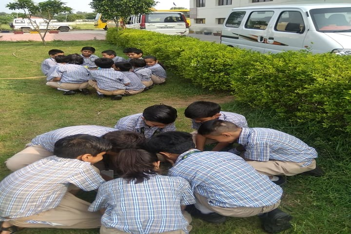 Paramlakshya World School-Tree Plantation